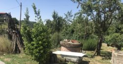 VICOFORTE VENDE cascinale con terreno